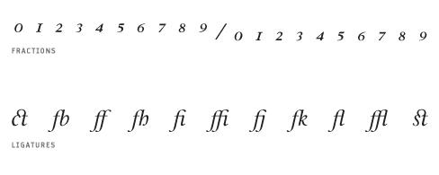 Leyden Italic Special