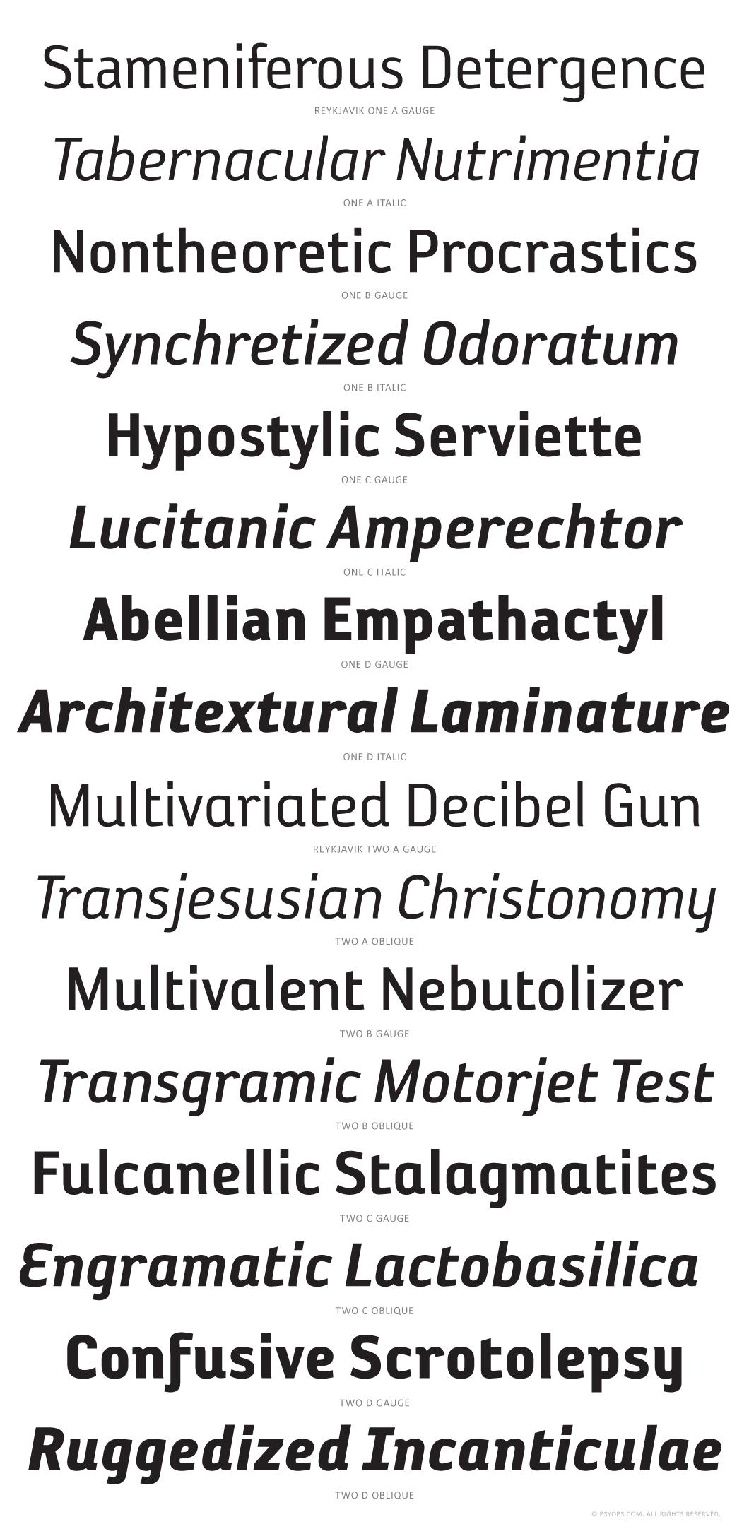 Reykjavik Superset Font Specimen