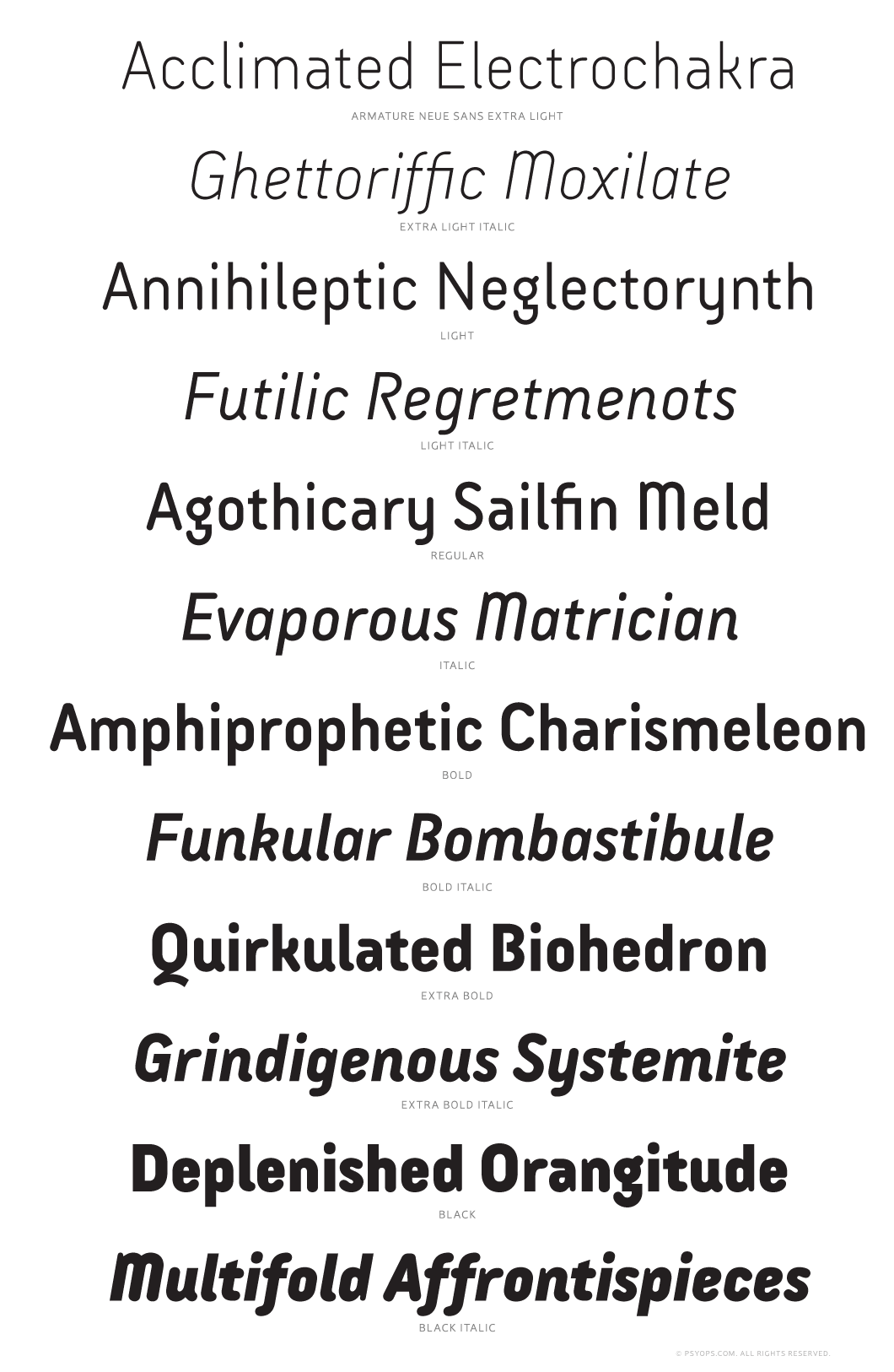Armature Neue Sans by Bob Aufuldish