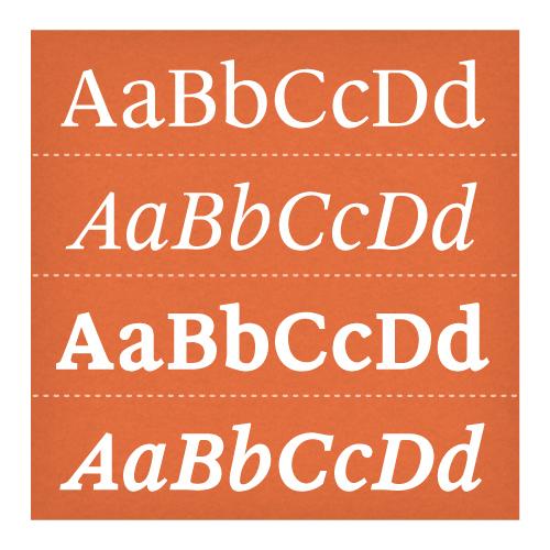 Leyden News Set - PSY/OPS Type Foundry